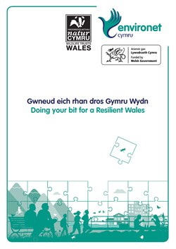 Doing Your Bit for a Resilient Wales