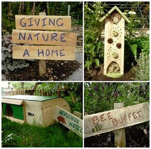 Giving nature a home